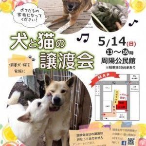 5月お見合い会のお知らせ(会場:周陽公民館)