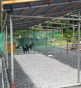 シェルター建設の進捗状況