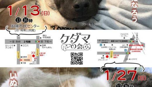 1月27日☆譲渡会のご案内☆2月開催日程掲載