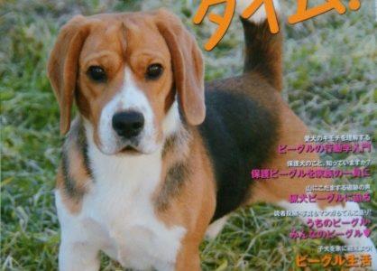 犬雑誌 Wan3月号  発売中~‼