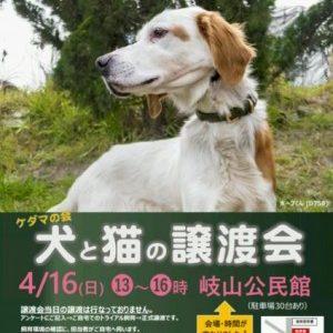 4月お見合い会のお知らせ(会場:岐山公民館)